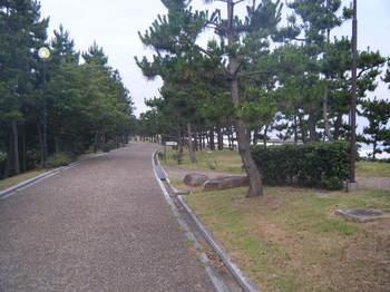 2009_07120013